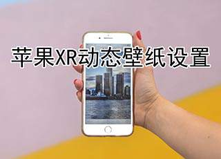 苹果xr如何设置动态壁纸