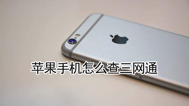 苹果手机怎么查三网通