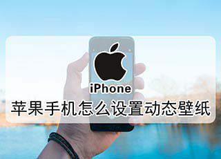 苹果怎么设置照片动态壁纸图片