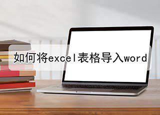 如何将excel表格导入word