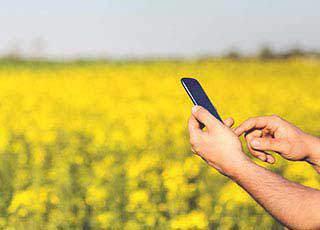 手机应用数据能删除吗