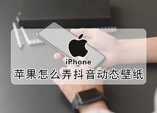 苹果怎么弄抖音动态壁纸