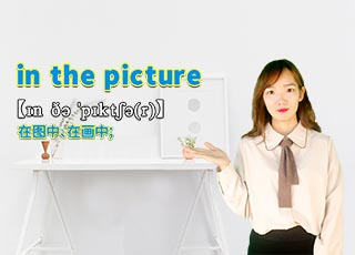in the picture的讲解