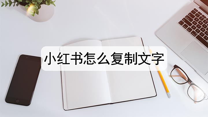 小红书怎么复制文字
