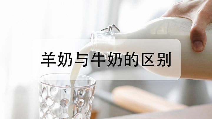 羊奶与牛奶的区别